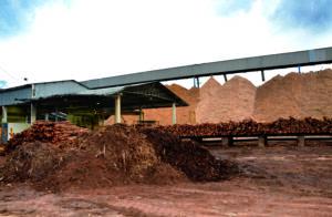 Houtige biomassa