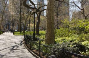china groene stad bomen planten koolmonoxide